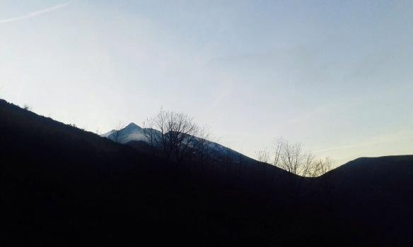 2015/01/img_8982.jpg